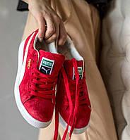 Жіночі кросівки Puma x careaux x rose basket porcelain. Живе фото. Топ якість (Репліка ААА+)