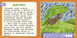 Детские сказки Оранжевая книга сказок Я читаю по слогам: узнаю буквы и складываю их в слоги, фото 4