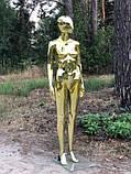 Женский золотой манекен Аватар в полный рост на подставке, фото 2