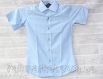 """Рубашка школьная с коротким рукавом на мальчика 7-12 лет """"FOREST"""" купить недорого от прямого поставщика"""