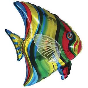 Фольгированный шар Рыба тропическая 65см х 67см Разноцветный