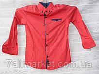 """Рубашка с длинным рукавом, принт, на мальчика 7-12 лет """"FOREST"""" недорого от прямого поставщика"""