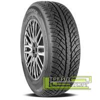 Зимняя шина Cooper Discoverer Winter 255/50 R19 107V XL