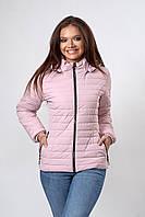 Женская демисезонная куртка. Код модели К-115-37-20 Б. Цвет пудра.