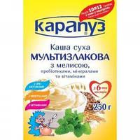 Каша Карапуз мультизлаковая мягк уп 250 г