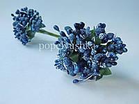 Дрібноцвіт темно-синій