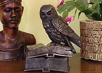 Коллекционная шкатулка Veronese Сова на книгах 74687A1