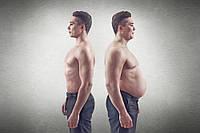 Куда девается жир, когда человек худеет?