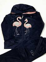 Велюровый спортивный костюм S&D Фламинго, синий 5868 (р.158)