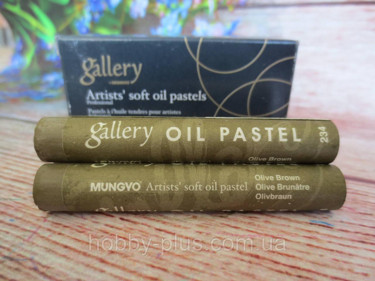Пастель олійна м'яка MUNGYO, № 234, колір на фото