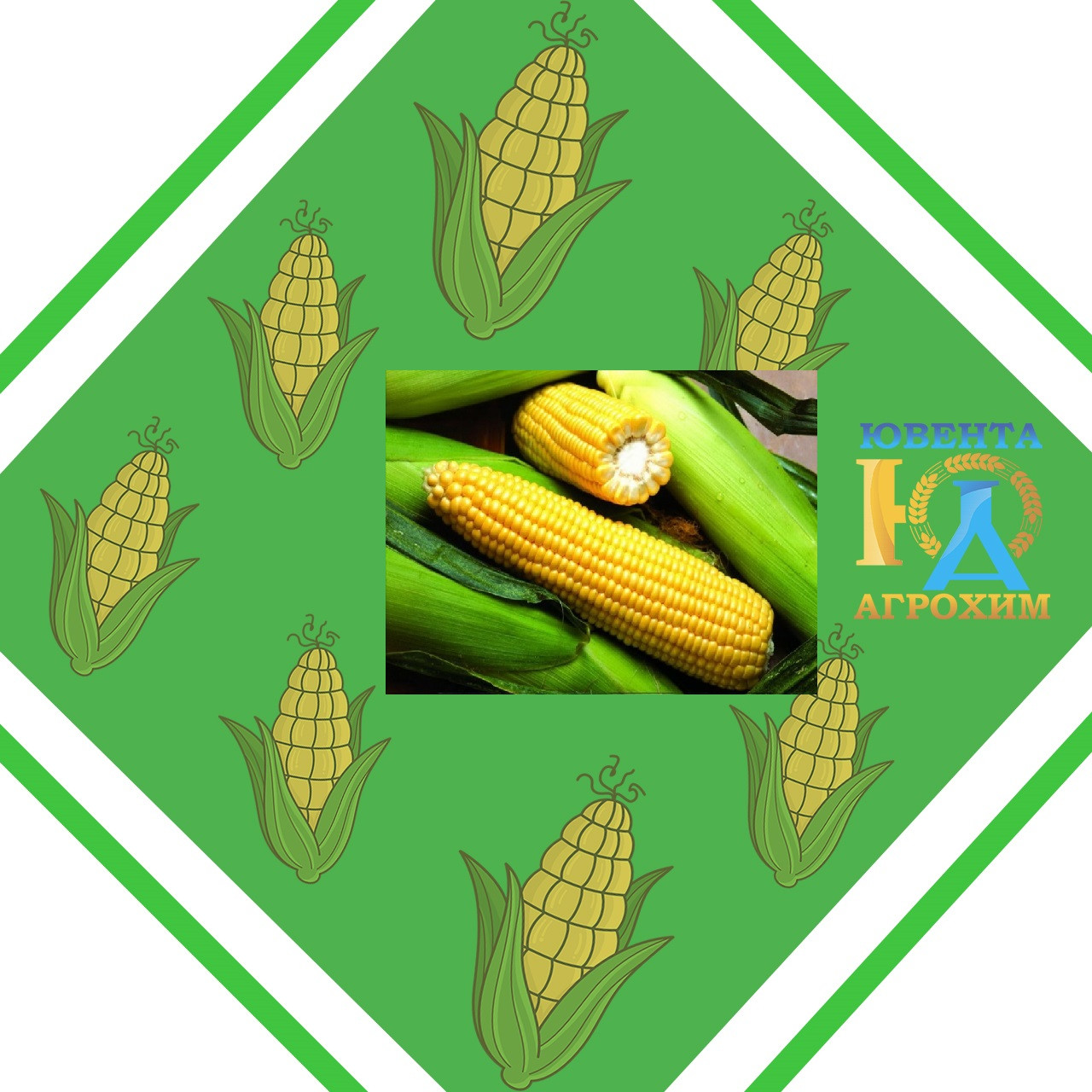 Семена кукурузы НК Нерисса