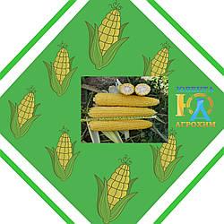 Семена кукурузы Аляска