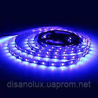 Светодиодная LED лента UV 2835 60LED/м  300LED 4,8W/м ультрафиолет 12V IP20, фото 5