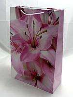 Подарочные пакеты для женщин PVM304712W