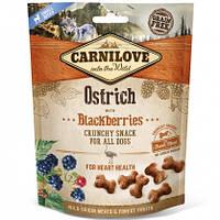 Carnilove Dog Crunchy Snacks Ostrich with Blackberries Лакомство для собак страус, ежевика, 200г