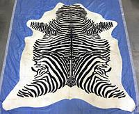 Шкура под зебру белая, купить шкуру зебры, фото 1