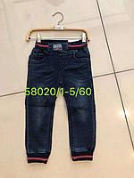 Джинсовые брюки для мальчиков Seagull оптом, 1-5 рр