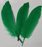Перья гуся Декоративное перо Цвет Зеленый 13-20см