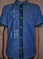 Детская рубашка для мальчика Tayfur