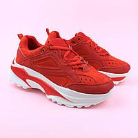 Кроссовки подростковые женские красные тм Violeta  размер 38,39,40, фото 1
