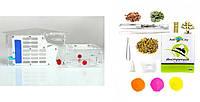 Комплект муравьиная ферма ДОМ МЕССОРА + колония муравьев, корм, аксессуары и декор (31х12х13 см)
