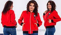 Куртка Бомбер  BK-0242 р:50-52,54-56,58-60 029614