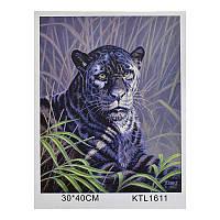 Картина по номерам KTL 1611 (30) в коробке 40х30
