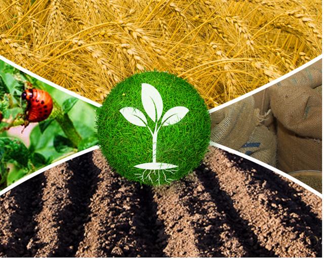 Средство защиты растений