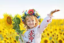 Вітаємо вас зі святом: Днем Незалежності України!