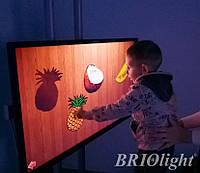 Інтерактивна панель для шкіл та ІРЦ Briolight S-32