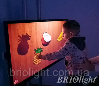 Інтерактивна панель для шкіл та ІРЦ Briolight S-32