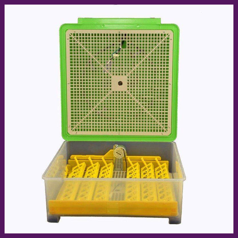 Автоматический инкубатор для домашних птиц 48 яиц
