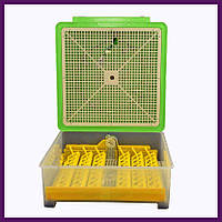 Автоматический инкубатор для домашних птиц 48 яиц, фото 1