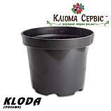 Горшки для рассады 3 л (кр), KLODA (Польша), фото 2