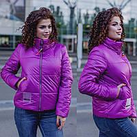 Куртка женская / плащевка, синтепон 150 / Украина 17-1196, фото 1