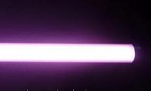 Лампы для подсветки мясных витрин,  лампы розового цвета, рыба мясо