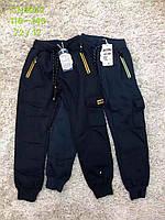 Спортивные брюки для мальчиков S&D оптом, 116-146 рр.