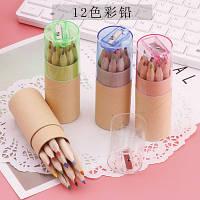 Набір міні-олівців 12 кольорів с чинкою-кришкою