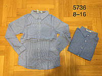 Рубашки на мальчика оптом, Buddy boy, 8-16 рр, фото 1