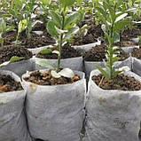Мішечки для розсади тканинні, різні розміри, фото 9