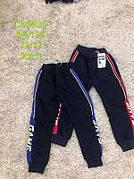 Спортивные брюки утепленные на мальчика оптом, S&D, 98-128 рр