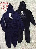 Велюровые костюмы на мальчиков оптом, S&D, 116-146 рр