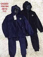 Велюровые костюмы на мальчиков оптом, S&D, 134-164 рр, фото 1