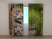 Фотоштора Wellmiх Два Леопарда