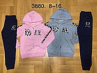 Трикотажный костюм 2 в 1 для девочек оптом, F&D, 8-16 лет,  № 3880, фото 1