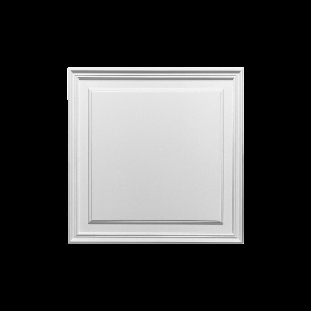 Панель для оббивки дверей і стін Orac Decor D 503, ліпний декор з поліуретану.