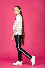 Школьные брюки для девочки Школьная форма для девочек Colabear Турция 184246A
