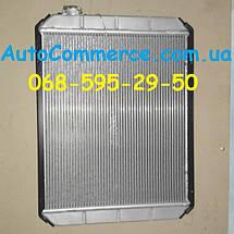 Радиатор охлаждения ХАЗ 3250 Антон (55*73), фото 2
