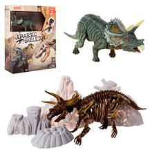 Динозавр Трицератопс скелет