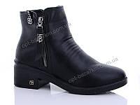 Ботинки женские WSMR 2031 (36-41) - купить оптом на 7км в одессе